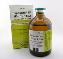 Энроксил 5% инъекционный антибиотик, 100 мл, энрофлоксацин, свиньи, собаки, коровы
