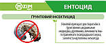 Энтоцид  от грунтовых вредителей 100г, фото 3