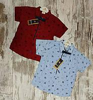 Дитяча сорочка з коротким рукавом для хлопчиків 5-8 років