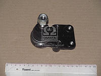 ⭐⭐⭐⭐⭐ Опора шаровая ИСУЗУ PANEL/FASTER TRUCK 83- LOW R L (производство  CTR)  CBIS-6