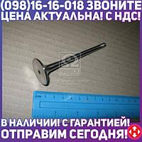 ⭐⭐⭐⭐⭐ Клапан выпускной EX VAG AEB/AGB/AGU/AJL/AJQ/APU/AQA/ARZ/AUQ/AWT/AJH/BFB 29.9X6X103.9 (пр-во KS)