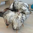 Шкура овцы исландской породы серого цвета 02, фото 2