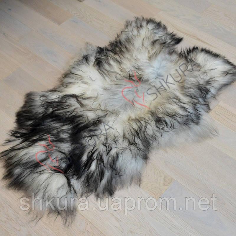 Шкура овцы исландской породы серого цвета 02