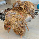 Шкура овцы Исланды коричневого цвета 02, фото 2