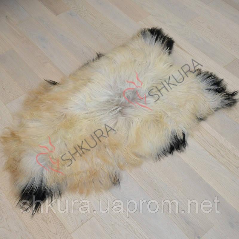 Шкура овцы исландской породы бело-черного цвета 03