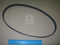 ⭐⭐⭐⭐⭐ Ремень поликлиновый 5PK955 (производство  DONGIL)  5PK955