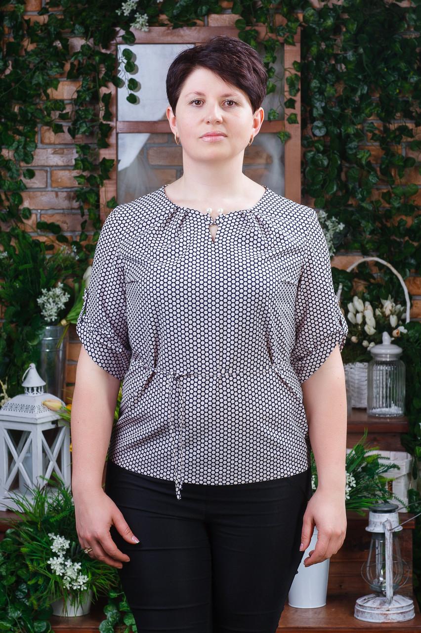 Блуза женская в горошек  Бл-6040
