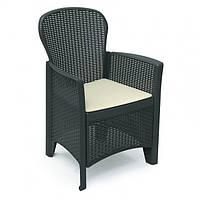Кресло Folia Antracite производство Италия, фото 1