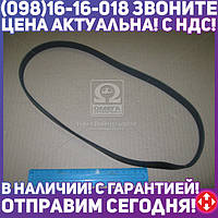 ⭐⭐⭐⭐⭐ Ремень поликлиновый 5PK945 (производство  DONGIL)  5PK945