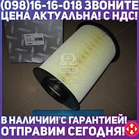 ⭐⭐⭐⭐⭐ Фильтр воздушный ФОРД FOCUS 04-, ВОЛЬВО S40 04- (RIDER)  RD.1340WA9567