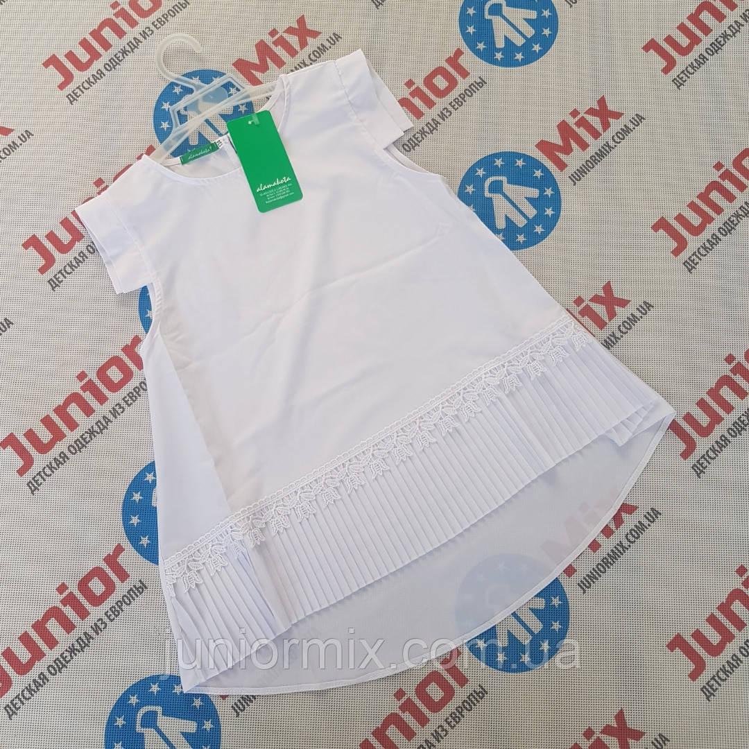 Подростковая школьная блузка для девочек  оптом Alamakota. ПОЛЬША