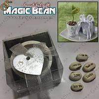 """Горшочек с волшебными бобами - """"Magic Bean"""""""
