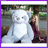 Огромный плюшевый мишка Панда мягкая игрушка 200 см серый цвет