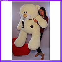 Большой плюшевый мишка Teddy мягкая игрушка 140 см шампань