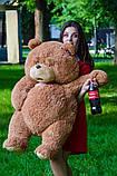 "Мишка TEDdy из  ""Третий лишний"" 100 см, фото 4"