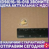 ⭐⭐⭐⭐⭐ Лампа 24V EBSR 1,2W B8,0-12 yellow (производство  Narva)  17022CP