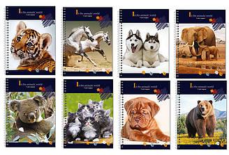 Блокнот У світі тварин А6 обложка пластик 48 листов(E20319-97)