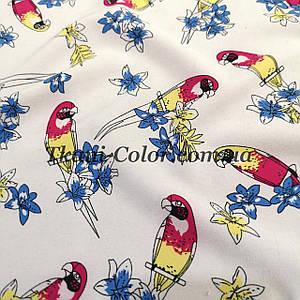 Ткань супер софт принт попугайчики