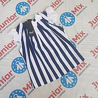 Детские школьные блузки в полоску для девочек   оптом UMBO