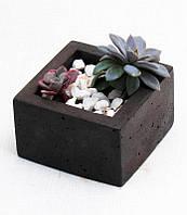 Квадратный горшок, кашпо для кактусов
