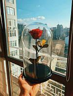 Оригинальный Подарок Девушке,Долгосвежая Роза В Колбе, не вянет 5 лет