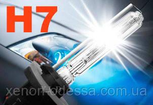 Лампа ксенон H7 5000K 35W AC