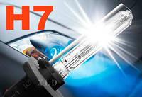 Лампа ксенон H7 8000K 35W AC