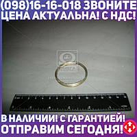 ⭐⭐⭐⭐⭐ Кольцо (производство  МТЗ)  А61.03.002