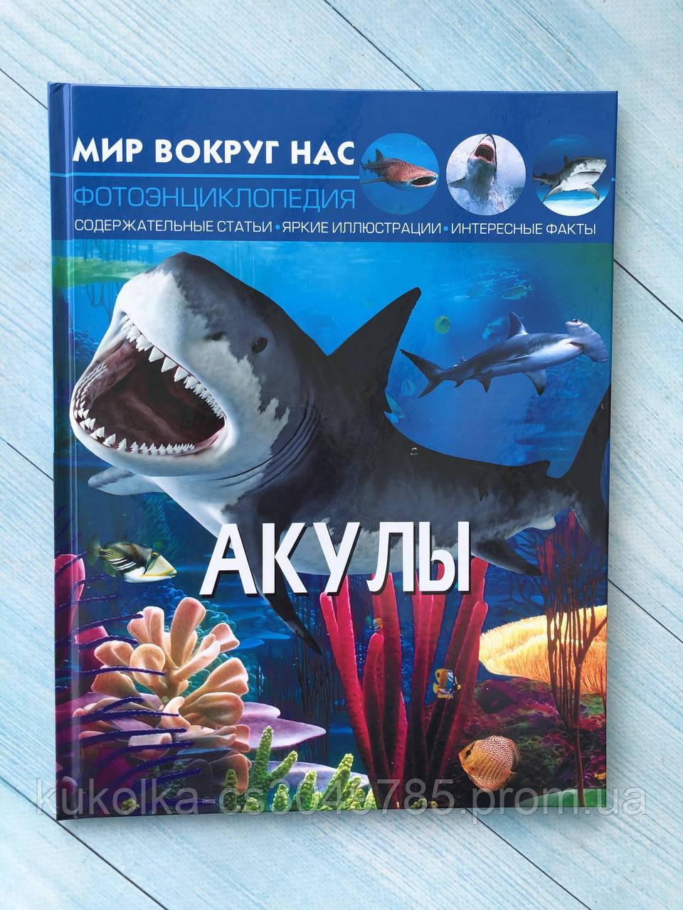 """« Акулы » Фотоэнциклопедия. Серия """" Мир вокруг нас """""""