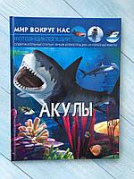 """« Акулы » Фотоэнциклопедия. Серия """" Мир вокруг нас """", фото 1"""