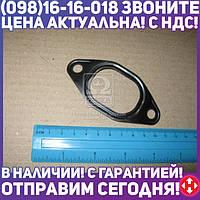 ⭐⭐⭐⭐⭐ Прокладка коллектора EX FIAT 8140.63/8140.07/S8U (4) (пр-во PAYEN)