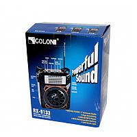 Портативный радиоприёмник MP3 USB Golon RX-9122 Синий SD портативное радио кардридер Фонарик, фото 1