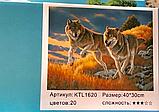 """Картина по номерам """"Волки"""" (40*30 см), фото 2"""