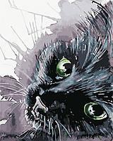 Картина за номерами Чорний кіт AS0416 40*50см