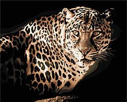 Картина за номерами в коробці Леопард AS0418 40*50см