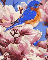 Картина за номерами в коробці Яскрава пташка AS0279 40*50см