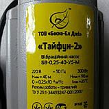 Насос вибрационный БОСНА LG Тайфун-2 БВ-0.25-40-У5M, фото 2