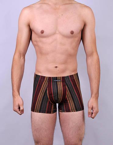 Мужские трусы - боксеры C+3  001  L  красный с коричневым, фото 2