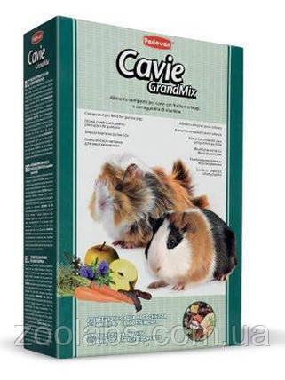 Корм для морских свинок Grandmix Cavie 0,85 кг, фото 2