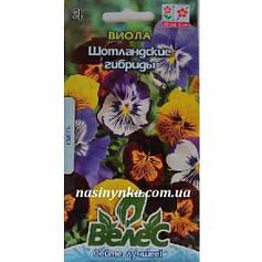 Семена Виолы Шотландские гибриды 0,1 г
