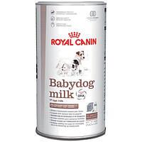 Заменитель молока для щенков Royal Canin BABYDOG MILK 2 кг
