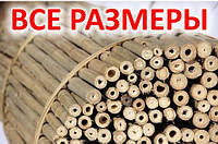 Бамбуковые стволы 120 см 14/16 мм