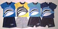 """Ккостюм для мальчика """"Акула"""" 1-3 года"""