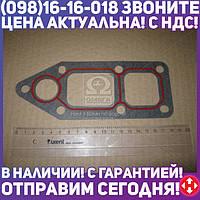 ⭐⭐⭐⭐⭐ Прокладка, водяной насос DAF - 1458936 MX 315 (пр-во Elring) 255.290