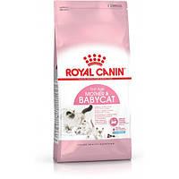 Сухой корм для котят Royal Canin MOTHER and BABYCAT 2 кг