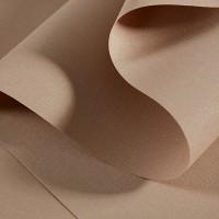 Рулонные шторы ткань камилла № 601-613