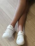 Стильные! В стиле Филипп Плейн женские кеды кожа  перфорация Philipp Plein слипоны белого цвета, фото 9