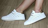 Стильные! В стиле Филипп Плейн женские кеды кожа  перфорация Philipp Plein слипоны белого цвета, фото 10
