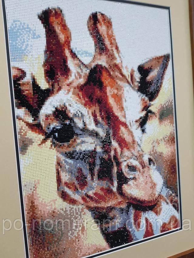 алмазная вышивка фото готовой работы с жирафом