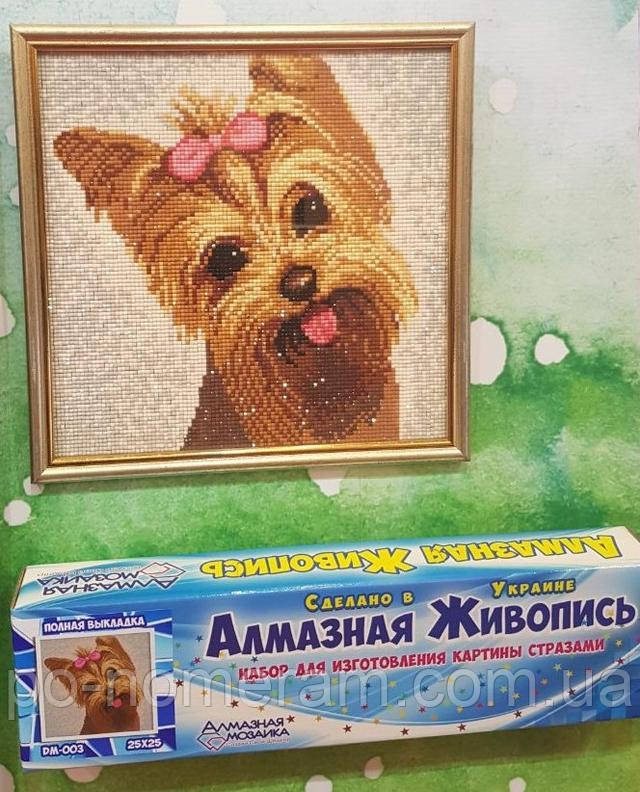алмазная вышивка фото готовой работы собачка